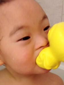 baby-duck6-225x300