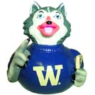 Washington Harry Husky Rubber Duck