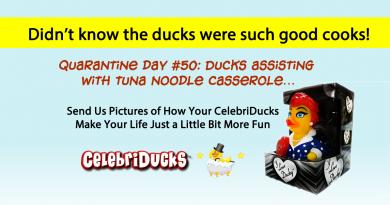 Quarantined Rubber Ducks